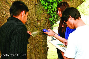 Students_and_tree_300x199