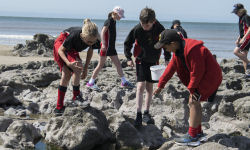 Marine Conservation Society Beach Clean up 1